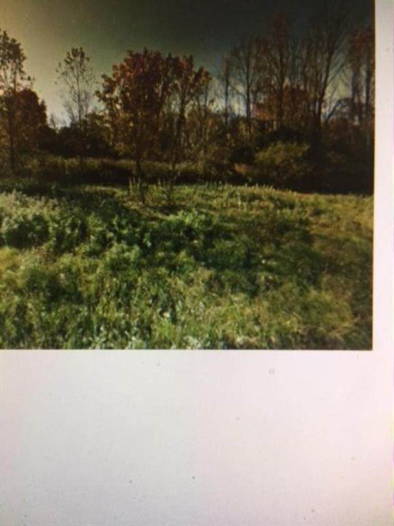 1820 Crest Avenue S, Macedon, NY 14502 (MLS #R1342242) :: Serota Real Estate LLC