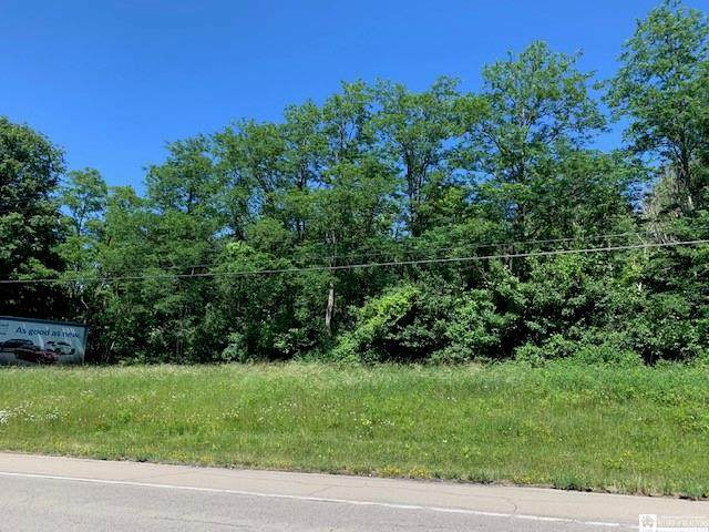 0 Portage, Westfield, NY 14787 (MLS #R1344633) :: Thousand Islands Realty