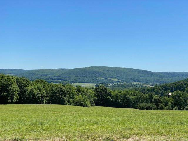 0 Farr Road, Amity, NY 14813 (MLS #R1345767) :: BridgeView Real Estate Services
