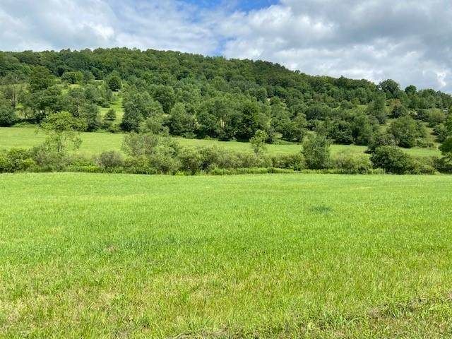805 Long Hollow Road, Annin-Town, PA 16750 (MLS #R1352046) :: Serota Real Estate LLC