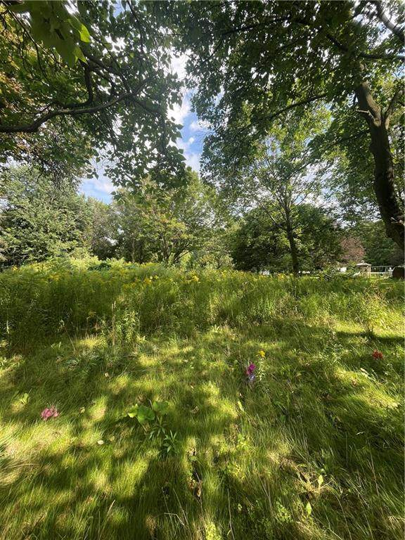 4299 State Route 21, Canandaigua-Town, NY 14424 (MLS #R1367002) :: Thousand Islands Realty