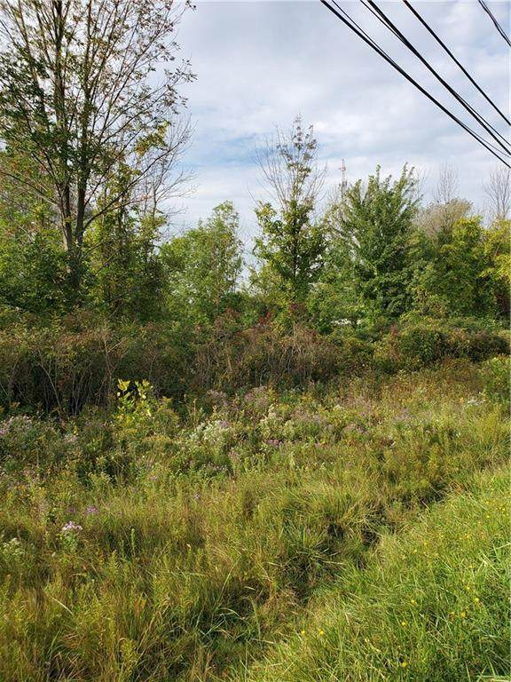 0 Fourth Section Road, Sweden, NY 14420 (MLS #R1368505) :: Robert PiazzaPalotto Sold Team