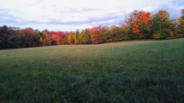 4105 State Route 436, Ossian, NY 14437 (MLS #R1368608) :: Robert PiazzaPalotto Sold Team