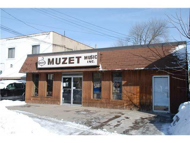 219 W Commercial St, East Rochester, NY 14445 (MLS #R178956) :: Robert PiazzaPalotto Sold Team