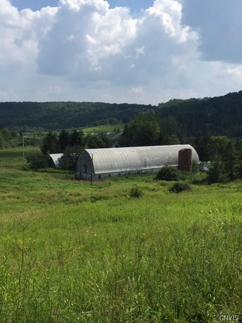 Rt 80 Route 80, Georgetown, NY 13072 (MLS #S1068192) :: The Chip Hodgkins Team