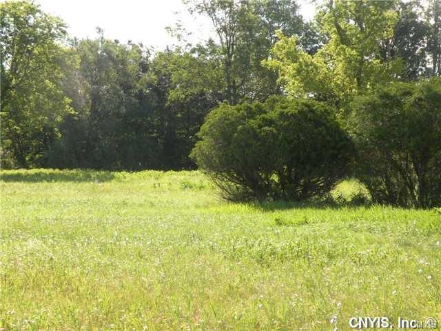 43040 Nys Route 12, Orleans, NY 13656 (MLS #S1072654) :: Thousand Islands Realty