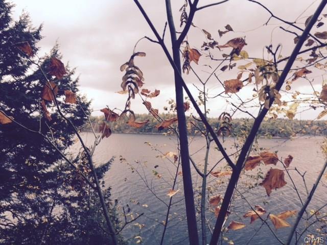 0 Camp Tousley Road, Theresa, NY 13691 (MLS #S1083839) :: Thousand Islands Realty