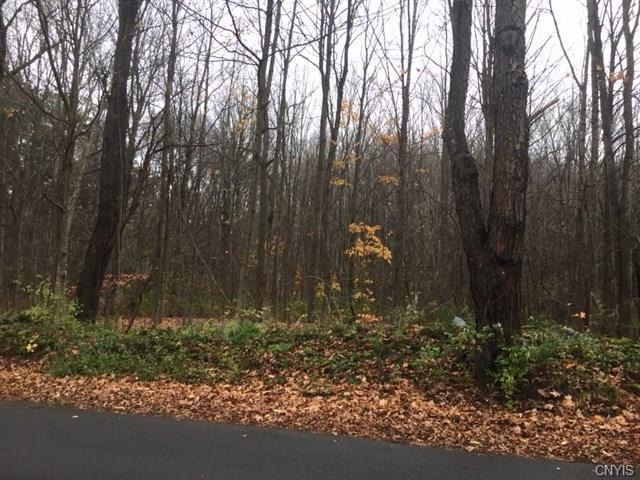 0 Stone Quarry Drive, Orwell, NY 13144 (MLS #S1084380) :: The Chip Hodgkins Team