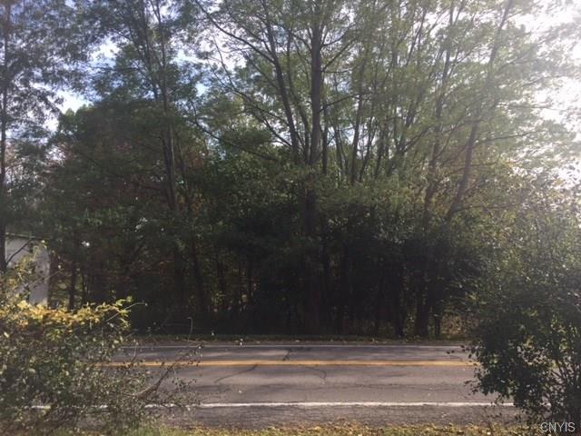 7150 Plainville Road, Lysander, NY 13112 (MLS #S1085882) :: The Chip Hodgkins Team