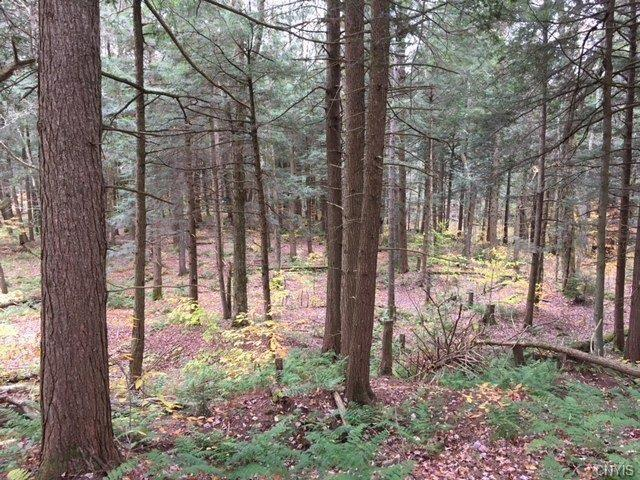 00 County Line Road Ss, Florence, NY 13316 (MLS #S1087656) :: Thousand Islands Realty
