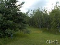 Lot 22/23 Fawn Lake Road, Orwell, NY 13302 (MLS #S1097017) :: The Chip Hodgkins Team
