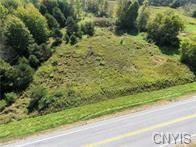 0 Co Route 42, Wilna, NY 13619 (MLS #S1097401) :: The Chip Hodgkins Team