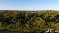 4580 Fox Lane, Cazenovia, NY 13035 (MLS #S1105816) :: Thousand Islands Realty