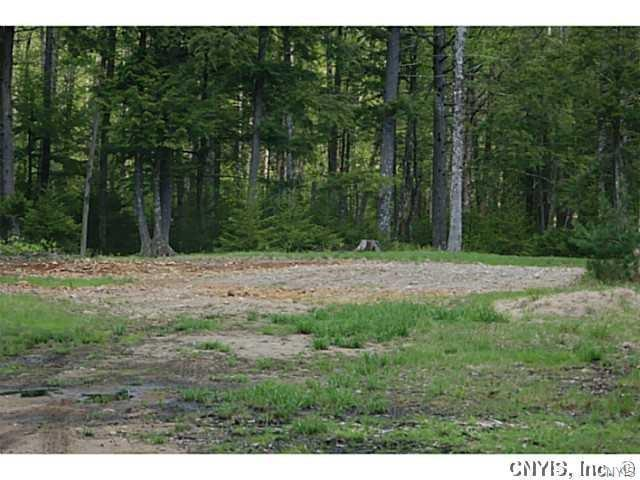 2433 Little Beaver Lake Road, Forestport, NY 13338 (MLS #S1116874) :: Thousand Islands Realty