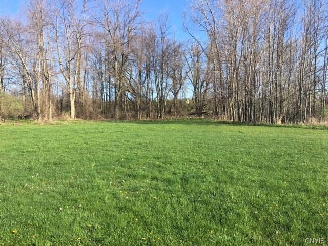 0 Sawyers Bay Road Extension N, Henderson, NY 13650 (MLS #S1117860) :: Updegraff Group
