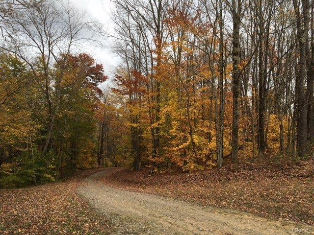 00 County Line Road Ss, Florence, NY 13316 (MLS #S1126814) :: Thousand Islands Realty