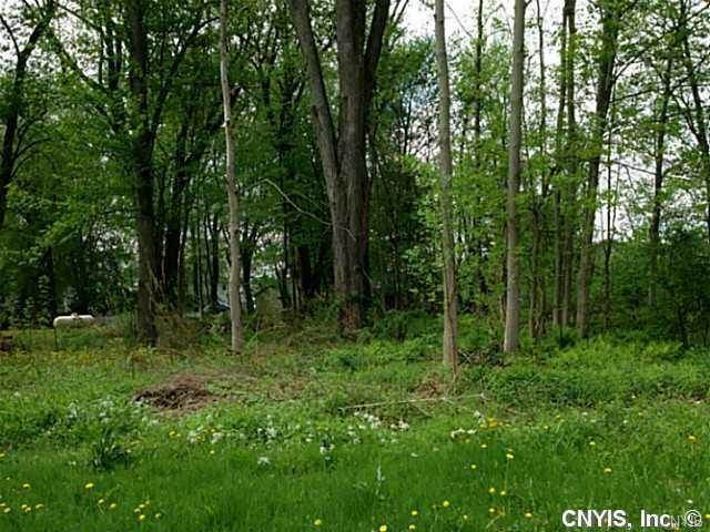 0 Nys Route 13, Vienna, NY 13123 (MLS #S1137180) :: Thousand Islands Realty