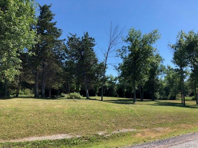 Brownville, NY 13634 :: Thousand Islands Realty