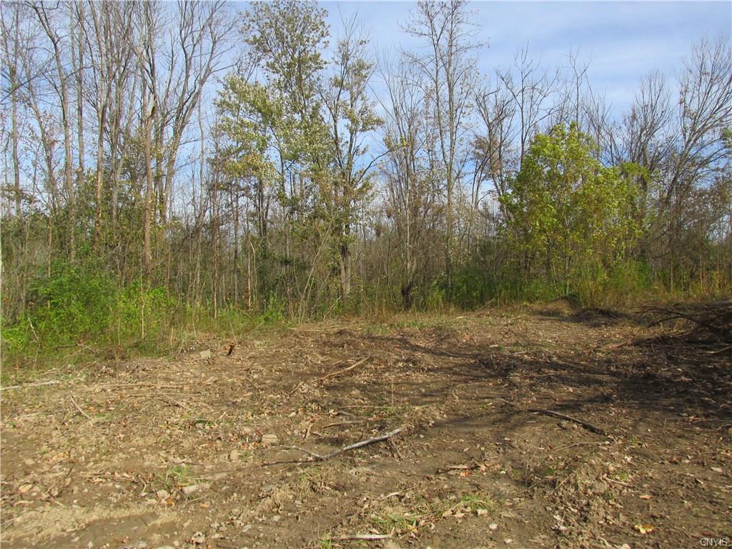 LOT 21 Mud Mill Road - Photo 1