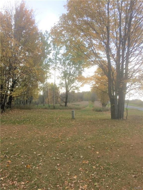 0 Co Route 41, Wilna, NY 13665 (MLS #S1156428) :: Robert PiazzaPalotto Sold Team