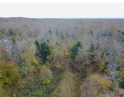 0 W Swancott Mill Road, Lewis, NY 12950 (MLS #S1157047) :: Thousand Islands Realty