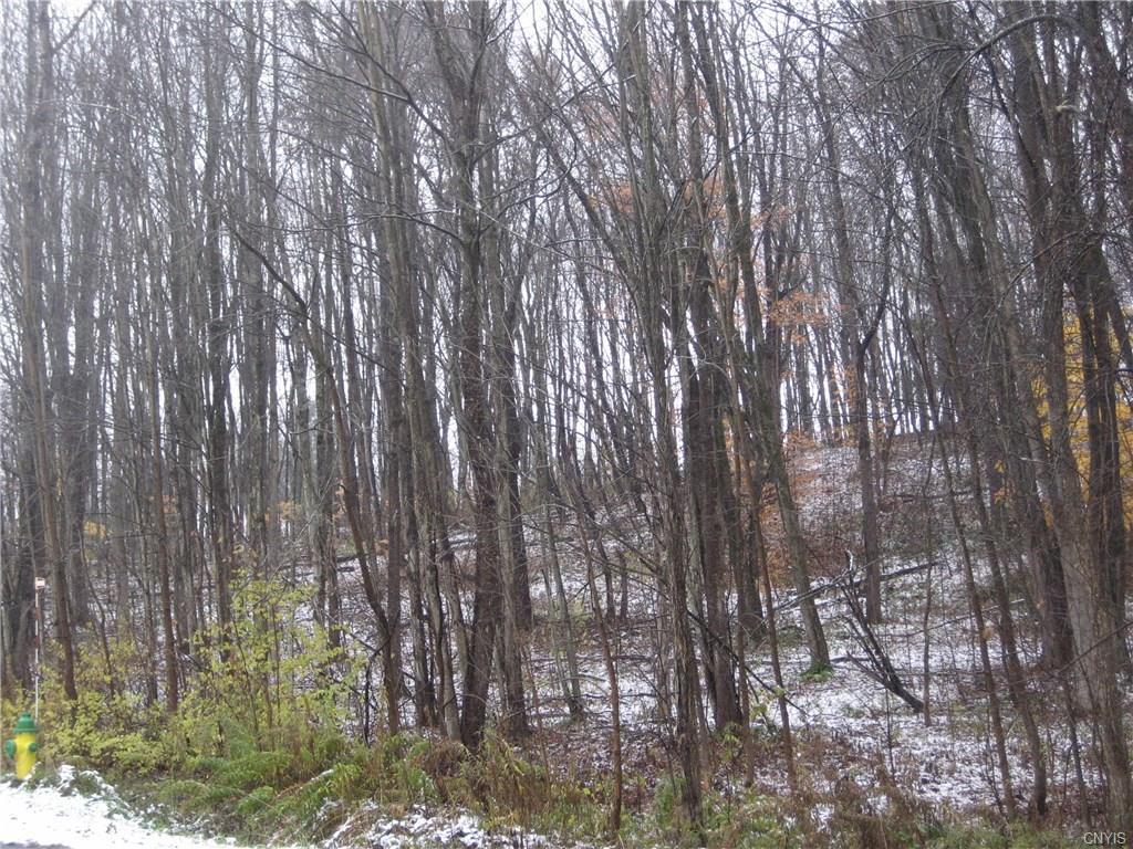 LOT 17 Wood Ridge Lane - Photo 1