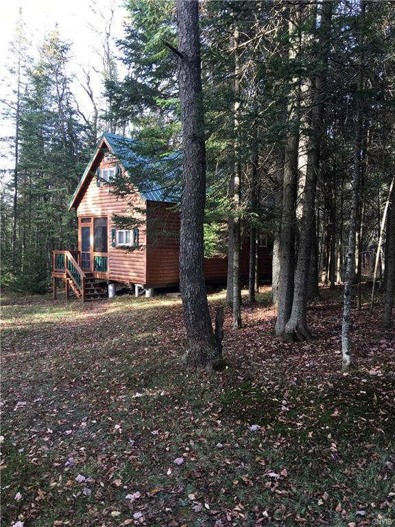 12091 Kincaid Road, Forestport, NY 13338 (MLS #S1158791) :: Thousand Islands Realty