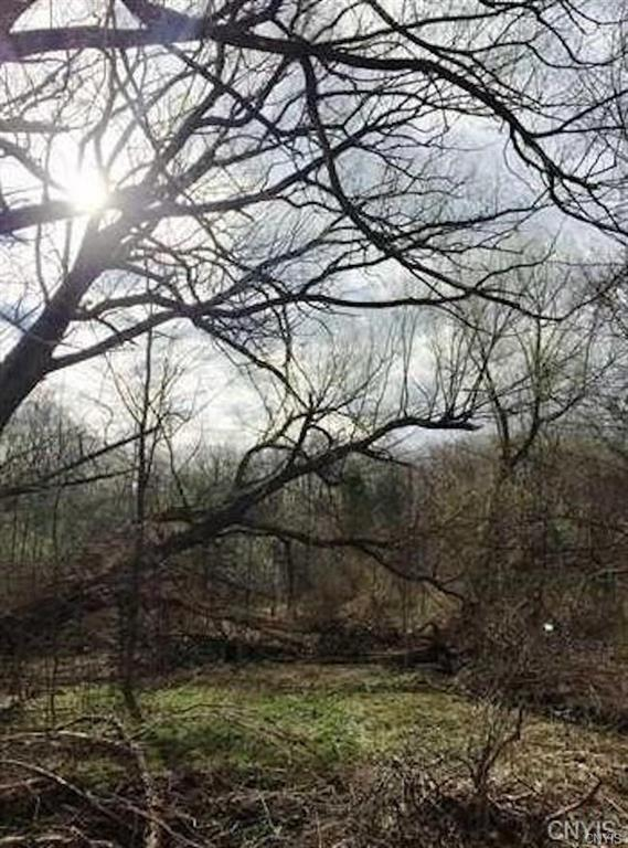 Lot C Henneberry Road, Pompey, NY 13138 (MLS #S1172983) :: MyTown Realty