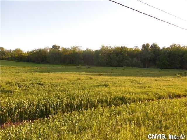 0 Co Route 42, Wilna, NY 13619 (MLS #S1173926) :: BridgeView Real Estate Services