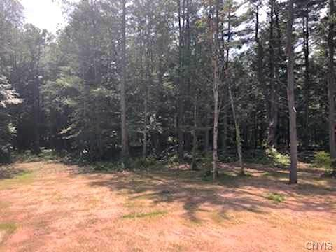 LOT 2 Slosson Road, West Monroe, NY 13167 (MLS #S1181113) :: Updegraff Group