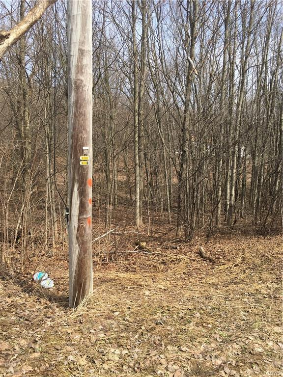 Lot 10 Rowlee Road, Volney, NY 13069 (MLS #S1187042) :: Mary St.George | Keller Williams Gateway