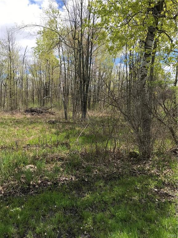 0 Middle Road Road, Orleans, NY 13656 (MLS #S1192452) :: Thousand Islands Realty