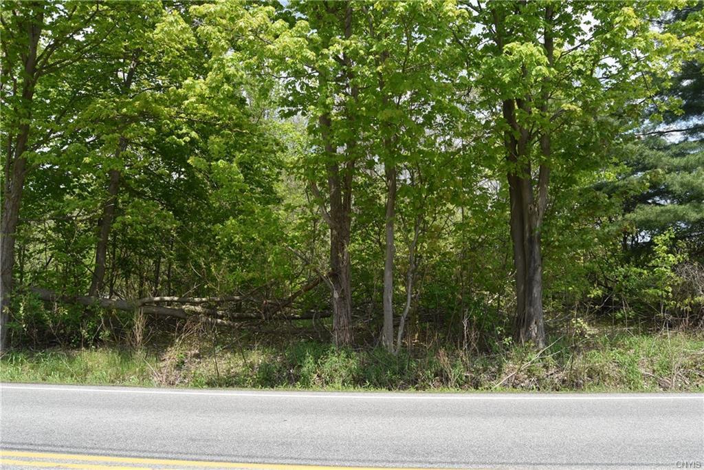 0 Fyler Road - Photo 1