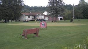 1441 Old Seneca, Skaneateles, NY 13152 (MLS #S1195263) :: The Chip Hodgkins Team