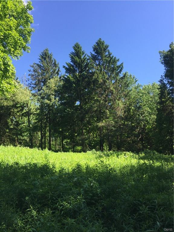 560 State Route 41 Road, Spafford, NY 13077 (MLS #S1201004) :: Thousand Islands Realty