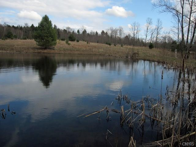 48 Acres E Belden Corners Road, Oppenheim, NY 13452 (MLS #S1201725) :: The Chip Hodgkins Team
