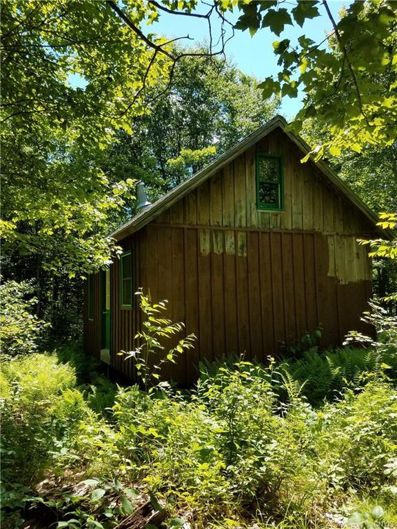 00 Sweeney Road, Lewis, NY 13325 (MLS #S1205594) :: 716 Realty Group