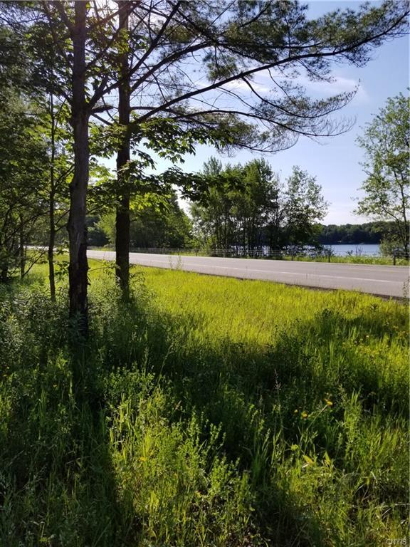 00 Route 365, Russia, NY 13438 (MLS #S1208820) :: Thousand Islands Realty