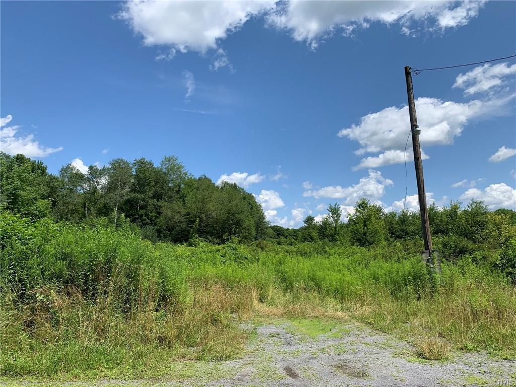 9100 Dinglehole Road - Photo 1