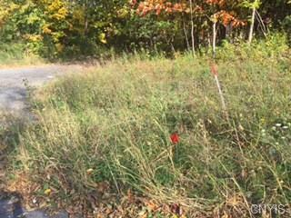 Lot 45 Velasko Road, Onondaga, NY 13215 (MLS #S1217318) :: MyTown Realty