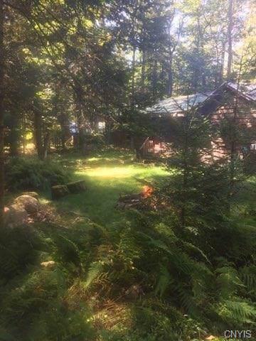 219 Joy Tract Road, Webb, NY 13420 (MLS #S1227114) :: Thousand Islands Realty
