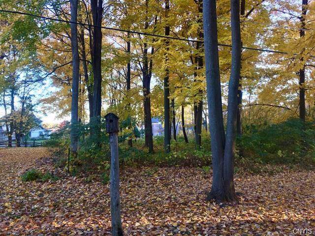 0 Westminster Park Rd Road, Alexandria, NY 13640 (MLS #S1228219) :: Thousand Islands Realty
