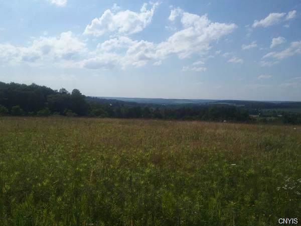 195 ( lot 5) Tower Road, Cortlandville, NY 13045 (MLS #S1230442) :: 716 Realty Group