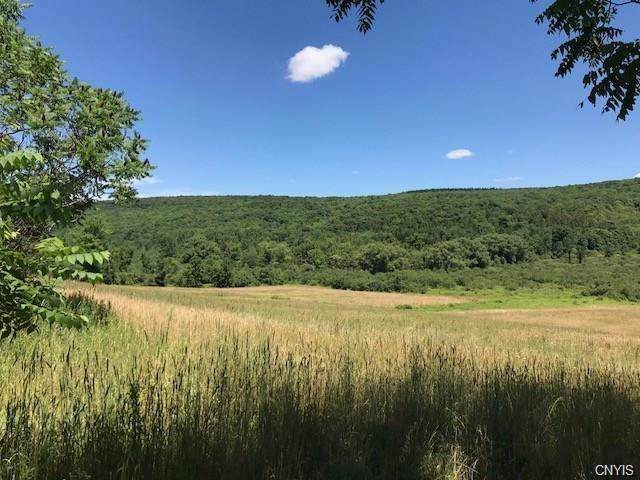 7367 Cold Brook Road, Scott, NY 13077 (MLS #S1235890) :: 716 Realty Group