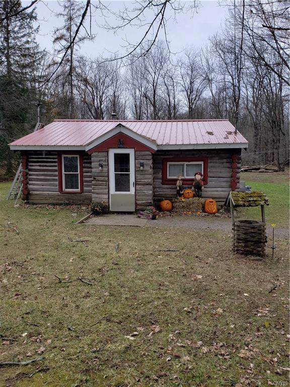 1053 Grant Road, Russia, NY 13324 (MLS #S1236640) :: TLC Real Estate LLC