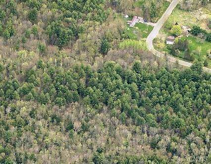 000 Nicholsville Road, Constantia, NY 13044 (MLS #S1240636) :: The CJ Lore Team | RE/MAX Hometown Choice