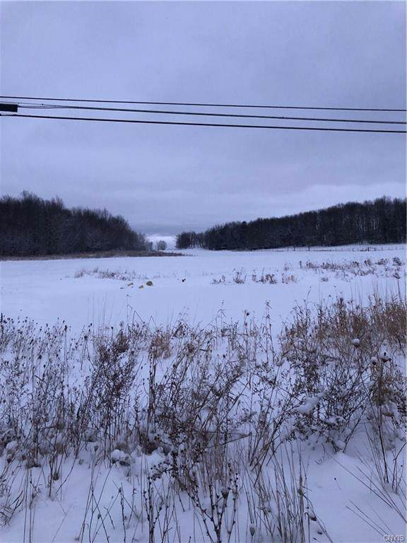 30853 Nys Route 26, Theresa, NY 13691 (MLS #S1241151) :: MyTown Realty
