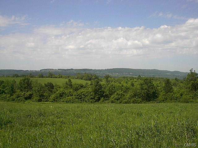 0 West Fiery Hill Road, Danube, NY 13365 (MLS #S1245332) :: Robert PiazzaPalotto Sold Team