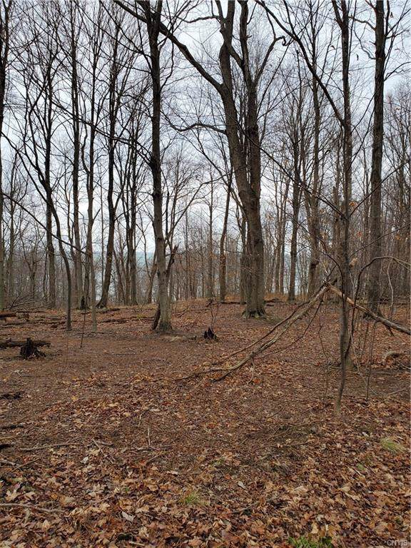 8711 N Bluff Road, Wolcott, NY 14590 (MLS #S1245726) :: BridgeView Real Estate Services