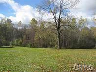 0 Hanley Road, Granby, NY 13074 (MLS #S1246611) :: BridgeView Real Estate Services